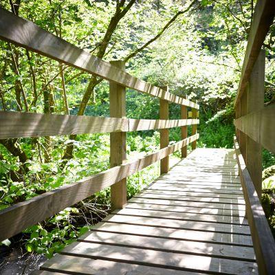 Tuckenhay Mill bridge.jpg